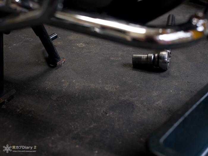 1_2012oillittlecub1012.jpg