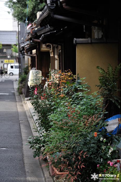 3_kyotocity7.jpg