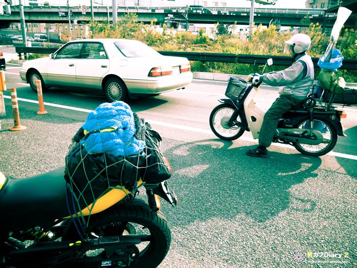 5_imakaraumekouji.jpg
