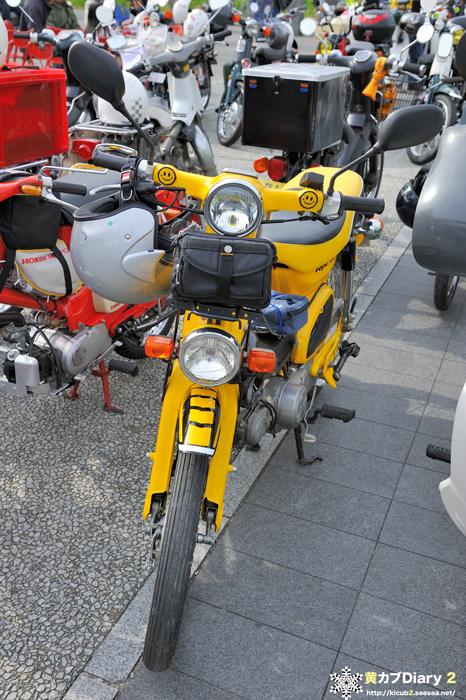 8_yellowsmilecub.jpg